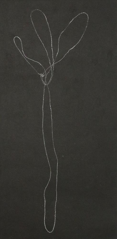 3386-19 Gara - String Figure